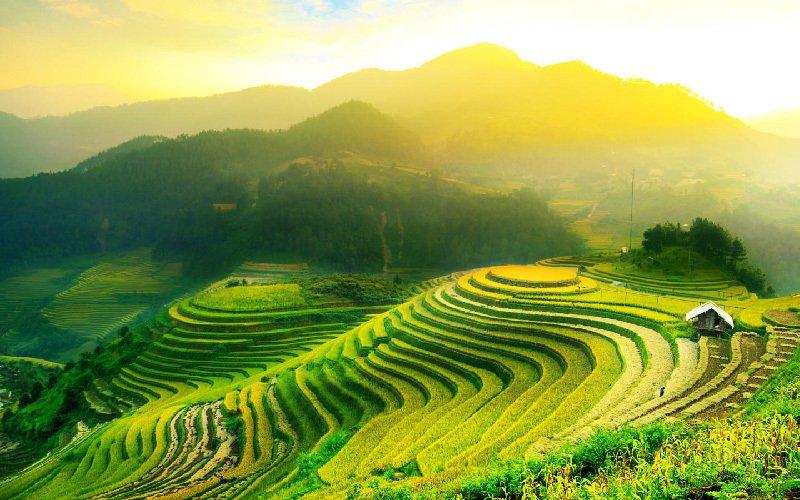Image result for Jatiluwih Rice Terraces Tabanan
